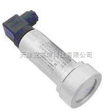 T300-电容压力变送器