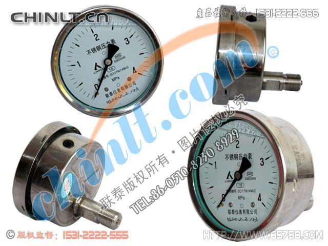 Y-100B-FZ/Z 耐震全不銹鋼軸向壓力表