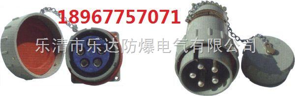 30gz/yz-30a防爆三相五极五孔插座