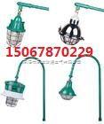 BAM52-01AN250防爆马路灯