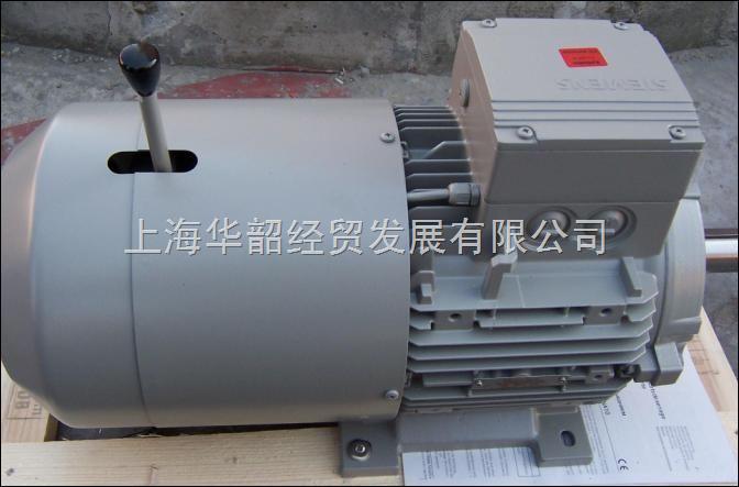 烟机用西门子电机1LA9133-4LA60-Z现货