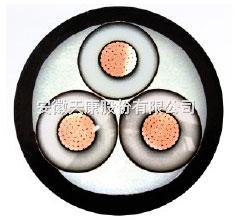 YJV3*25低压交联电力电缆,厂家详细参数