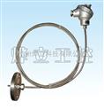 鎧裝熱電阻熱電偶 PT100 K型溫度傳感器等/可按需定制