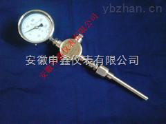 WTYY-1021-B液体压力式远传防爆热电阻温度计WTYY-1021-B-Z