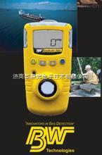 加拿大BW氯气检测仪GAXT-C-DL-氯气检测仪