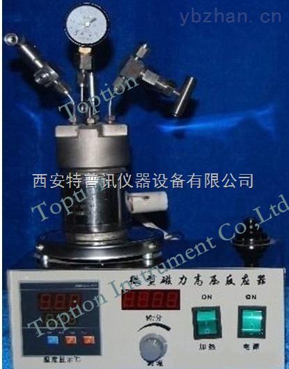 实验磁力搅拌式高压反应釜