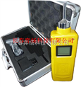 CY-H2氫氣檢測儀(泵吸式)