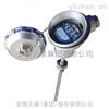 WZPJ-241/0 PT100热电阻厂家