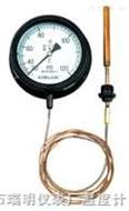 蒸气/气体压力式温度计