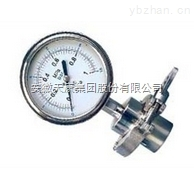天康特种压力表YTS-100