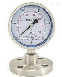 天康隔膜耐震压力表YMN