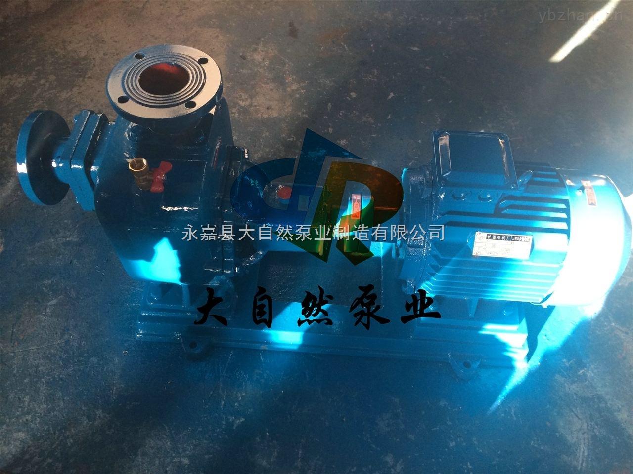 供应50ZW10-20防腐自吸泵