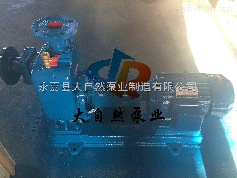 供应50ZX20-75化工自吸泵