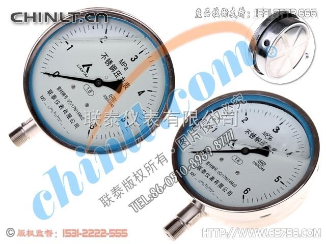 Y-150B-FZ-Y-150B-FZ 耐震不锈钢压力表