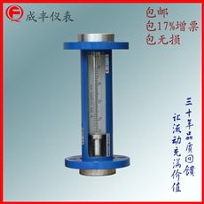 F10-40F管螺纹连接流量计选型 技术引进型安全可靠