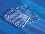 96孔细胞培养板 细胞培养板