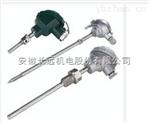 WZPK2-138双支铠装铂热电阻