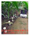 多点土壤水分速测仪 型号:M391547