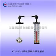 浮标磁性浮子液位计-制造厂家-品质保证