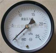 YE-100膜盒压力表 0-40mpa M20*1.5