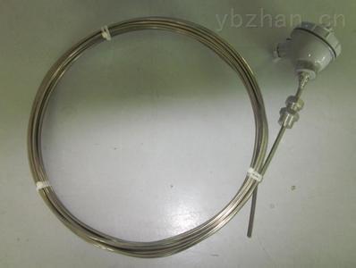 WZPK2-235S-双支铠装热电阻WZPK2-236SA 天康铠装热电阻