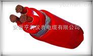 (厂家特价)(NH-YFG22-1)(耐火移动硅橡胶电缆)