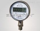 YS-100,数字压力表
