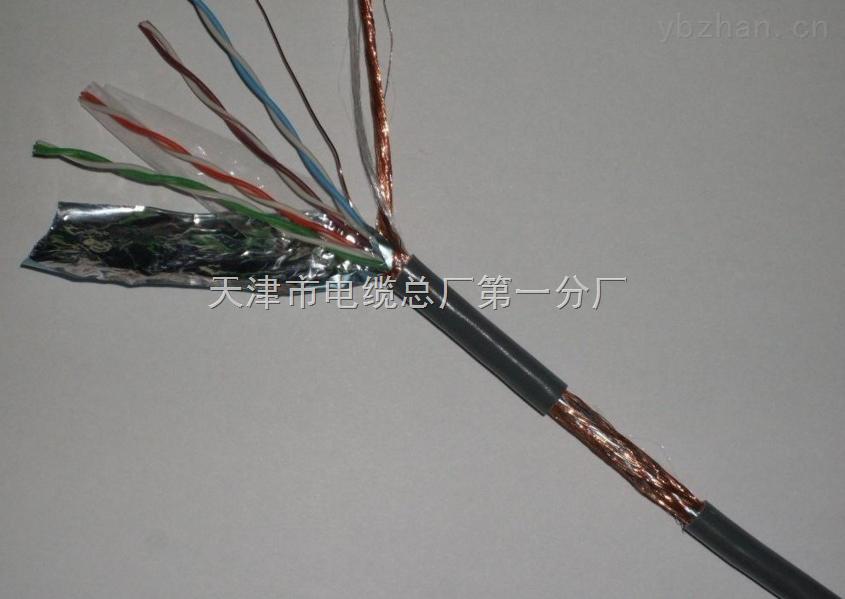 阻燃计算机电缆ZR-DJYVP2×2×1.5
