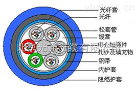 汉维矿用光缆MGTSV-24B1电缆厂家