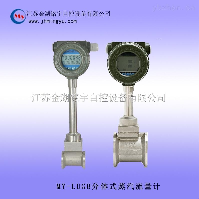 分體式蒸汽流量計專業生產性能穩定