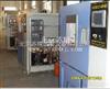 RGD-100/150/250/500/800/010上海高低温设备