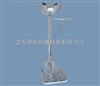 WJH0759洗眼器价格,脚踏立式洗眼器厂家,WJH0759脚踏立式洗眼器