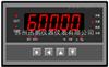 SPB-CHB 力值显示仪表