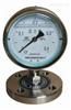 不锈钢膜片压力表YPF-150B