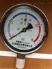 氫氣壓力表YTQ-100