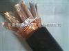 安徽天康生产ZR-DJYPVP  2*2*1.5计算机屏蔽阻燃电缆