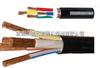 安徽天康NDW-YVFR-3*70+1*50聚氯乙烯耐低温电力软电缆